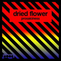 Prosaiciness — Dried Flower