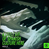 A Little Bit Of Spanish Culture Here, Vol. 5 — сборник