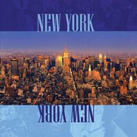 New York, New York — The Steve Wingfield Band