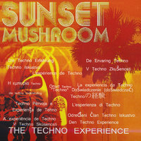 The Techno Experience — Sunset Mushroom