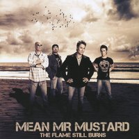 The Flame Still Burns — Mean Mr Mustard