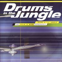 Drums in the Jungle (Essential Drum & Bass - the Dawn of Dubstep) — сборник