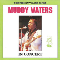 Muddy Waters in Concert — Muddy Waters