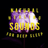 Natural Healing Sounds for Deep Sleep — Healing Sounds for Deep Sleep and Relaxation
