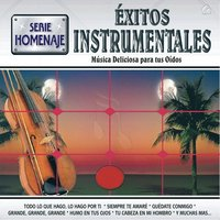 Éxitos Instrumentales — New World Orchestra