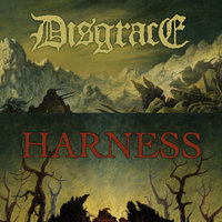 Split — Harness, Disgrace, Disgrace & Harness