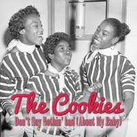 Don't Say Nothin' Bad (About My Baby) — The Cookies
