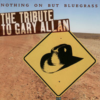 Nothing But Bluegrass: The Tribute To Gary Allan Performed by The Sidekicks — Pickin' On Series, Mark Thornton