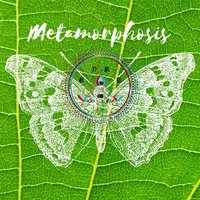 Metamorphosis — 47ag