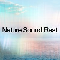 Nature Sound Rest — Nature Sounds for Sleep and Relaxation