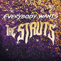 Everybody Wants — The Struts