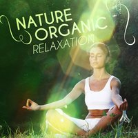 Nature: Organic Relaxation — Soundscapes!