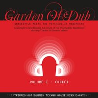 Garden of Dub - Cooked, Vol. 1 — The Psychedelic Manifesto, Hong Guo, Hong Huo