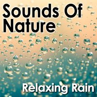 Sounds of Nature: Relaxing Rain — Pro Sound Effects Library