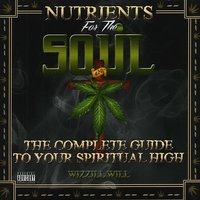 Nutrients for the Soul — Wizzill Will