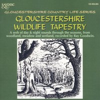 Gloucestershire Wildlife Tapestry — Ray Goodwin
