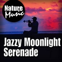 Jazzy Moonlight Serenade (Nature Sound with Music) — Nature Music