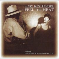Feel the Heat (feat. Mississippi Slim) — Gary Rex Tanner