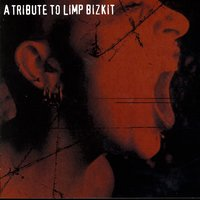 A Tribute To Limp Bizkit — Various Artists - Limp Bizkit Tribute