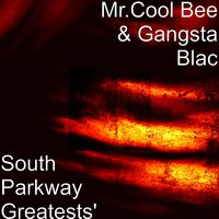 South Parkway Greatests — Gangsta Blac, Mr.Cool Bee
