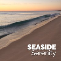 Seaside Serenity — Beach Waves Specialists