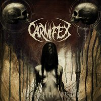 Until I Feel Nothing — Carnifex