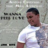 Wanna Feel Love — Andrea Calabrese feat. Mike Anderson