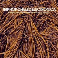 Trip Hop Chilled Electronica — сборник