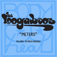 Meters — The Loogaboos