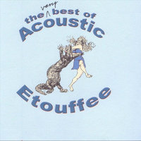 The Very Best of Acoustic Etouffee — Acoustic Etouffee