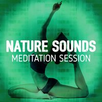 Nature Sounds Meditation Session — Nature Sounds Meditation