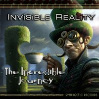 The Incredible Journey — Invisible Reality