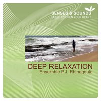 Deep Relaxation — Ensemble P.J. Rhinegould
