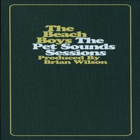 The Pet Sounds Sessions: A 30th Anniversary Collection — The Beach Boys
