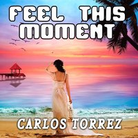 Feel This Moment — Carlos Torrez