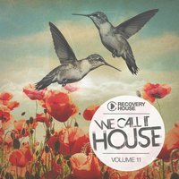 We Call It House, Vol. 11 — сборник