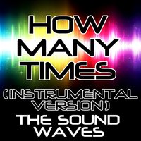 How Many Times — The Soundwaves