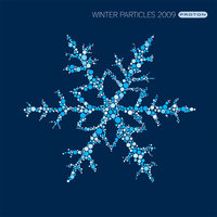 Winter Particles 2009 — Masque