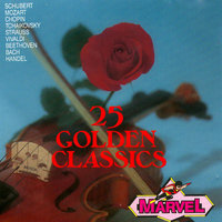 25 Golden Classics — Viennese Orchestral Academy