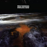Endless Now — Male Bonding