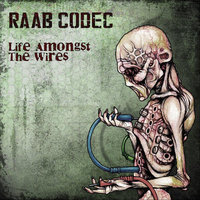 Life Amongst the Wires — Raab Codec