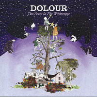 Years in the Wilderness — Dolour