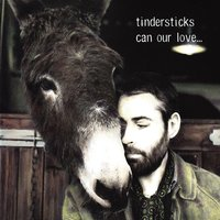 Can Our Love... — Tindersticks