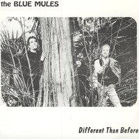 Different Than Before — The Blue Mules