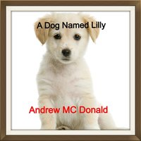 A Dog Named Lilly — Andrew MC Donald