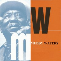 Muddy Waters — сборник