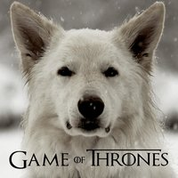 "Main Theme from ""Game of Thrones"" — Mark Maxwell"