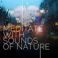 Meditate with Sounds of Nature — Meditation Sounds of Nature
