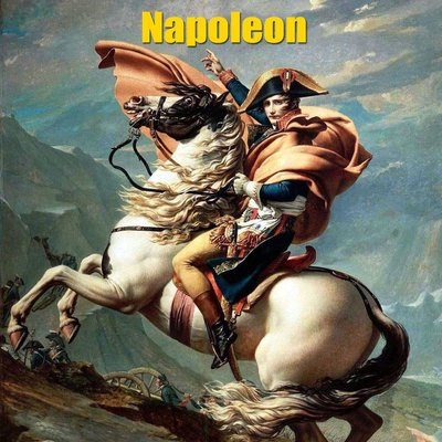 an analysis of the bonapartes success as a military leader in france Napoleon bonaparte his successes and failures few can deny that napoleon bonaparte one of the most brilliant military yet he went on to lead france.