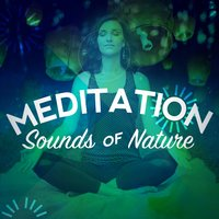 Meditation Sounds of Nature — Nature Sounds Meditation, Nature Sound Collection, Deep Sleep Meditation, Nature Sounds Meditation|Deep Sleep Meditation|Nature Sound Collection